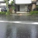 ゲリラ豪雨明けのすがすがしい晴れ間???