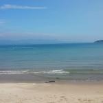 海岸の波を見に行きました